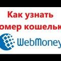 Как узнать номер кошелька Webmoney: видеоинструкция