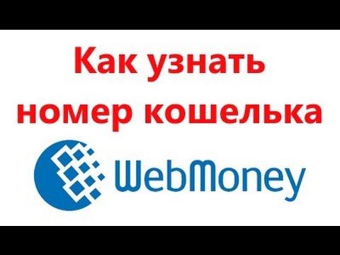 Как узнать номер кошелька Webmoney (Видео)