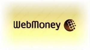 Простая инструкция как положить деньги на Webmoney