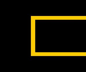 Что такое Яндекс Деньги и как пользоваться сервисом — инструкция